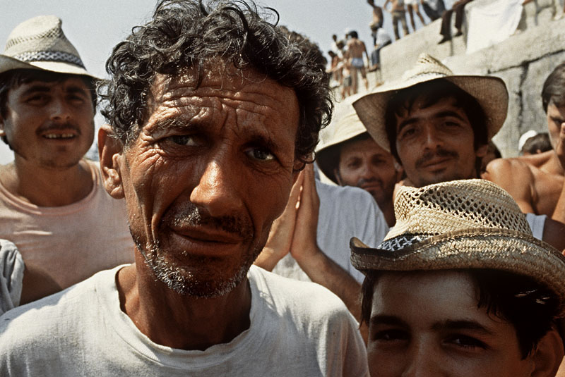 Livio Senigalliesi immigrazione